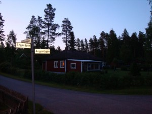 Будинки в Швеції 2
